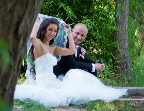Nicoleta & Vlad I Foto nunta