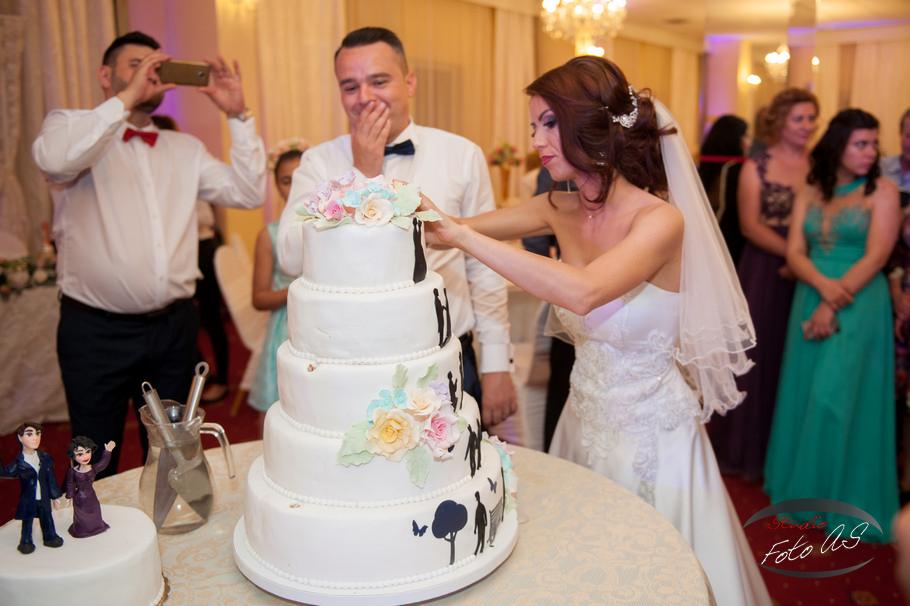 Foto video Timisoara Foto AS nunta C&A (28)
